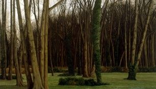 2000 - Berlin, Weissensee, Judischer Friedhof - Oil on canvas - 150 x200