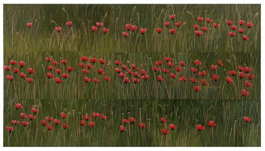 2012, Dead Flowers