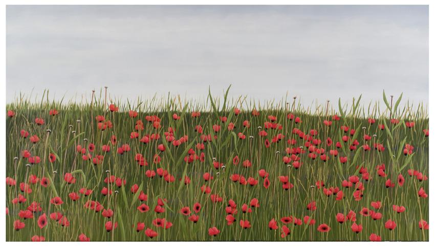 2012, Poppys
