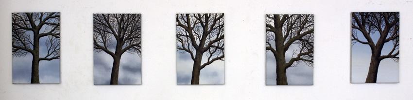 2012,Trees 2