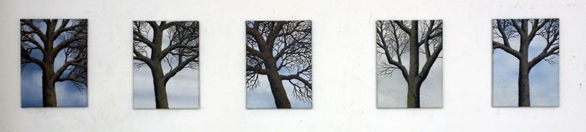 2012, Trees 3
