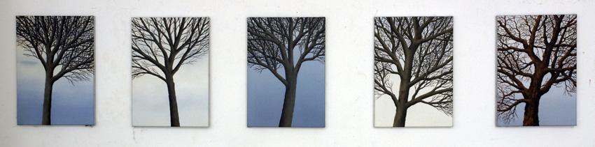 2012,Trees
